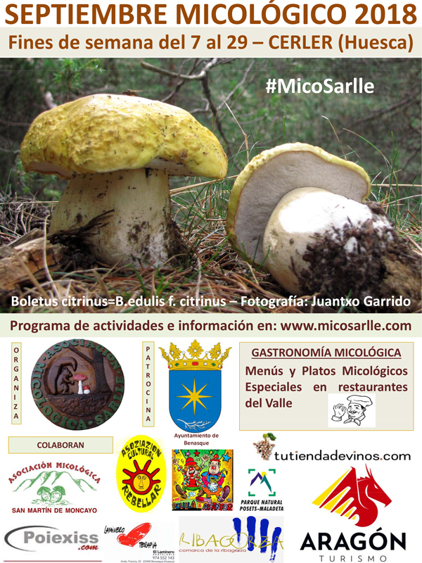Septiembre Micológico 2018 #MicoSarlle, en Cerler (Huesca)