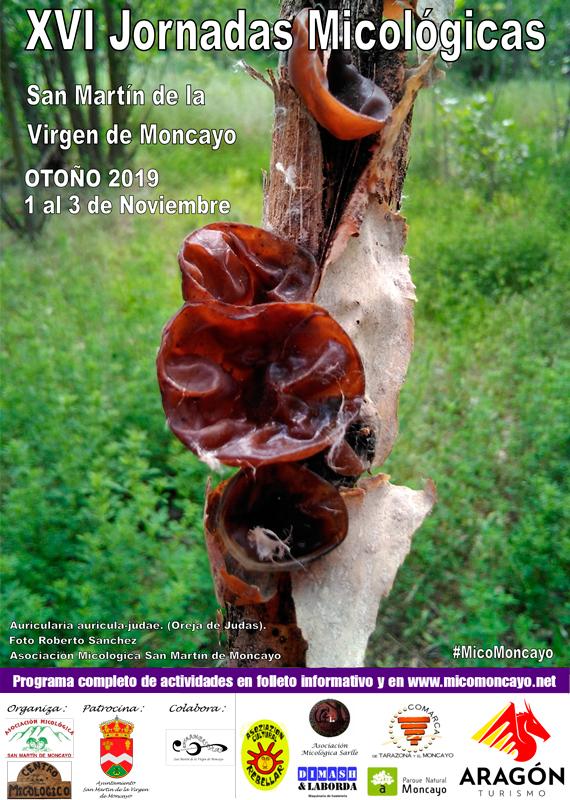 Cartel XVI Jornadas Micológicas Otoño 2019 #MicoMoncayo