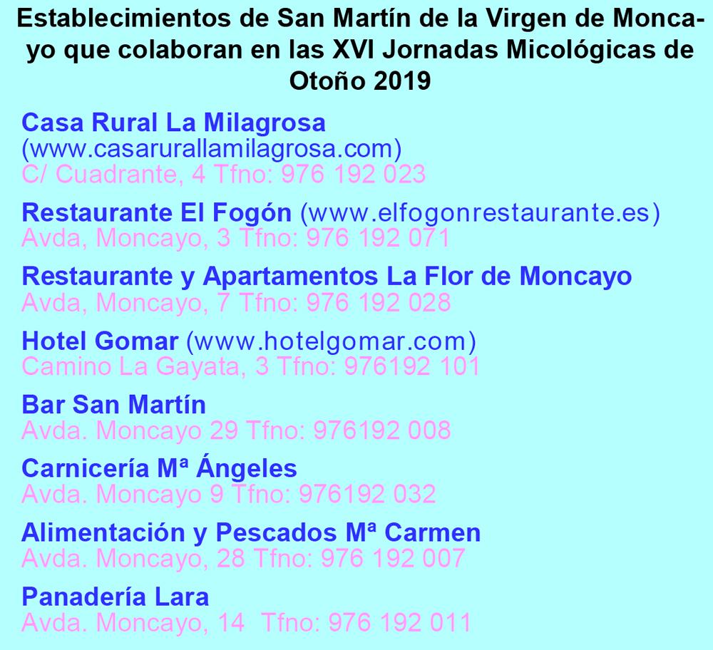 Establecimientos San Martín colaboradores en XVI Jornadas Micológicas Otoño 2019 #MicoMoncayo